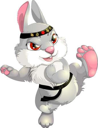 空手のウサギ