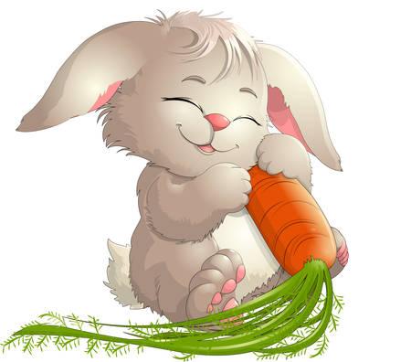 rabbit Banco de Imagens - 29916106