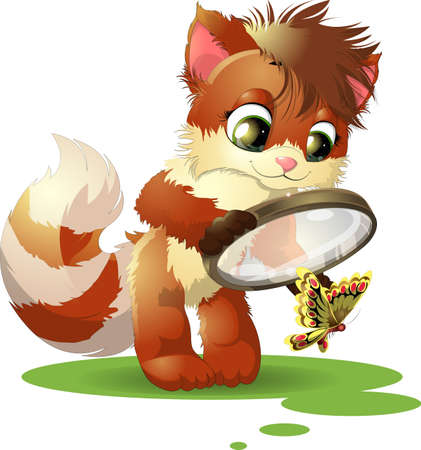 considering: beautiful kitten who is considering a butterfly with a magnifying glass Illustration