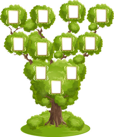 Beautiful family tree with portraits on a white background