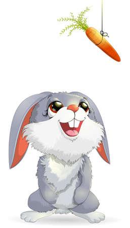eats: Rabbit eats a carrot on a white background