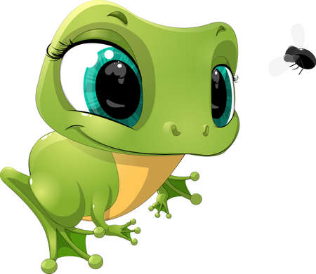 frog cartoon: beautiful frog that looks at a fly on a white background