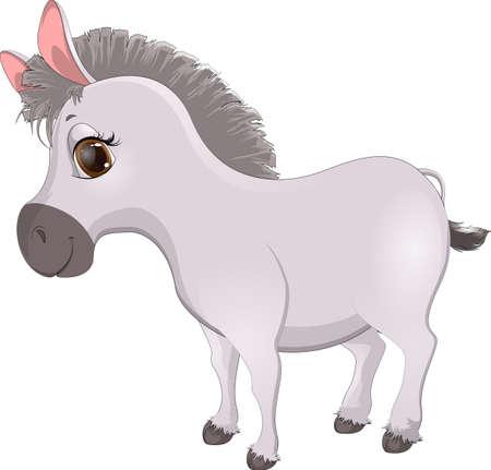 donkey: cute, handsome donkey cartoon on a white background