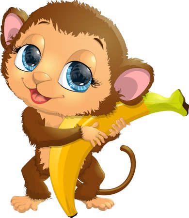 holds: beautiful monkey, which holds in paws a delicious banana
