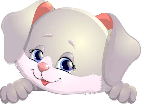 pretty smile: Little rabbit on a white background for poster