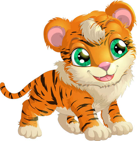 undomesticated cat: beautiful tiger painted on a white background