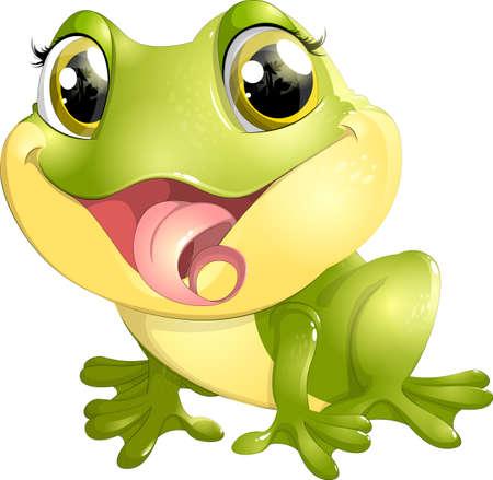 beautiful eyes: beautiful frog with big eyes on a white background Illustration