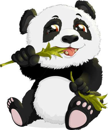one panda: Bear eats bamboo leaves on a white background