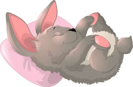 toy story: Sleep cute bunny on a white background