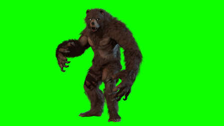 Bear 3d render image