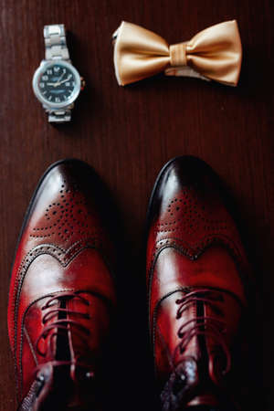 Groom Set Butterfly Shoes Watch Mens Accessories, on a wooden background