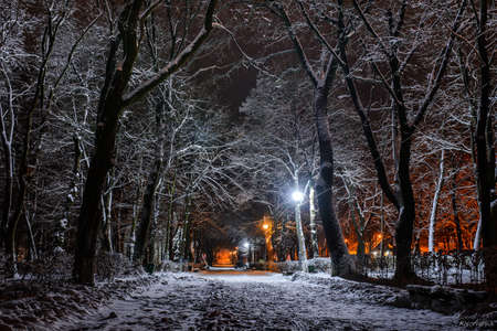 Winter park in the evening covered snow with a row of lamps Stockfoto