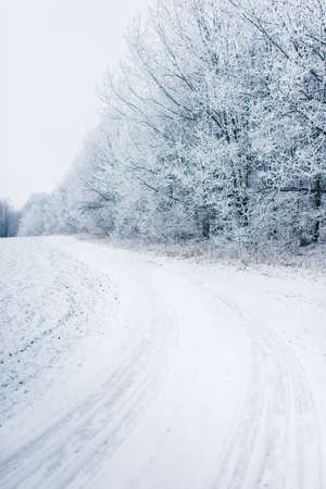 Winter landscape. Winter road and trees Stockfoto