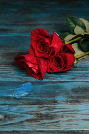 beautiful bouquet of red rose flowers on old blue wooden background, horizontal.