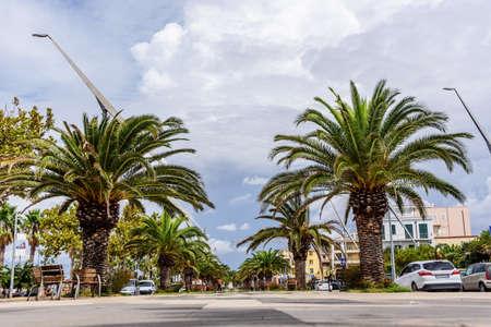 Alghero city avenue Palm Sardinia Archivio Fotografico