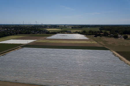 Agriculture - Field of asparagus covered with white foil made of drone. Photo showing the method of growing asparagus taken from a drone perspective in Western Germany in May.