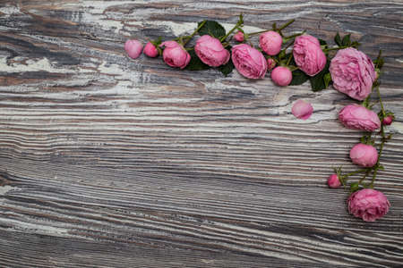 moody background: Pink roses on an old vintage table. Dark moody background with free text space.