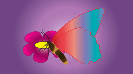 antennae: Beautiful butterfly with large wings sits on a flower isolated on a gradient background. Illustration
