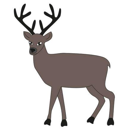 Adult male deer with big horns isolated white background. Ilustração