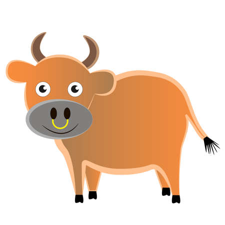 A fat agricultural bull with a kind muzzle isolated by a white background.