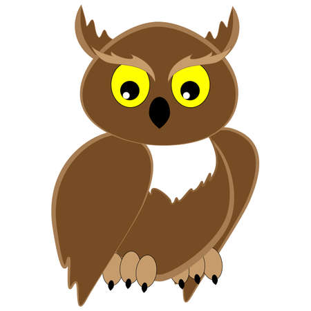 Bird of prey owl brown looks sideways isolated on white background.