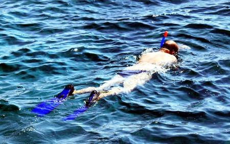 snorkelers: snorkeling