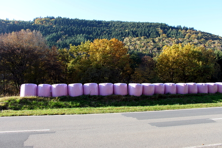 Colorful packaged hay in autumn Stock Photo