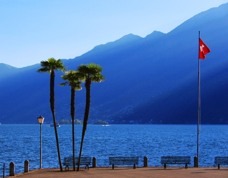Palm trees on Lake Maggiore Stock Photo
