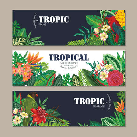 collection of three cards, with parrots, exotic flowers, plants and leaves.