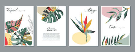 Vector collection of trendy creative cards with floral exotic tropical elements, palm leaves