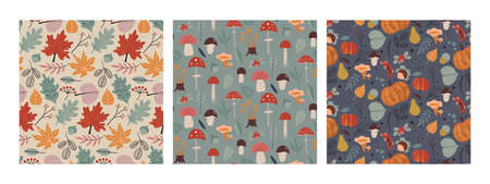 Set of vector colorful natural seamless patterns with flowers, fall leaves, mushrooms and plants. 向量圖像