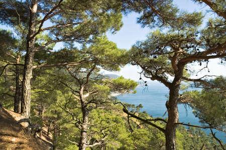 Sea coast on Black sea