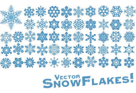 Different Snowflake shapes in vector forrmat Vector