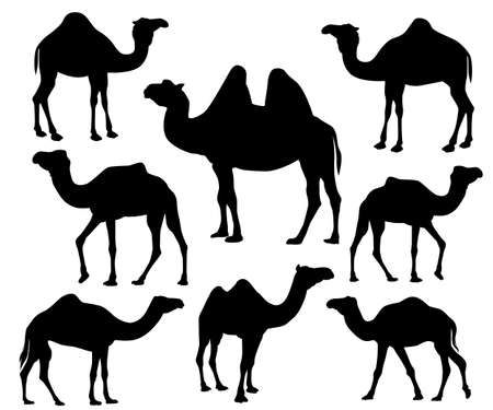 camel silhouette vector icon logo design set template