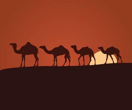 camel shepherd in the sunset desert landscape vector background illustration theme Ilustrace