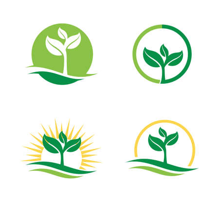 Agriculture natural plant fertile vector for logo design template