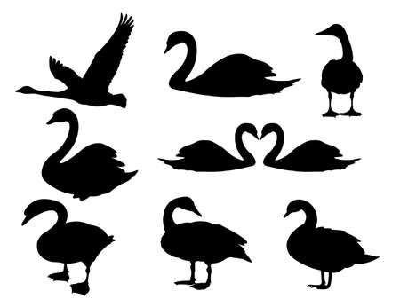 majestic detail swan vector logo silhouette illustration design template  イラスト・ベクター素材