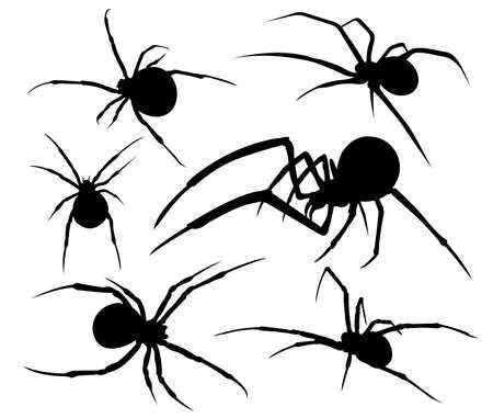 spider venomous silhouette illustration vector logo design template
