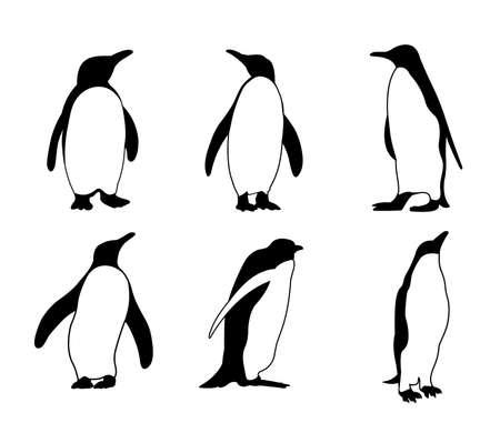 cute penguin silhouette vector design illustration Ilustração