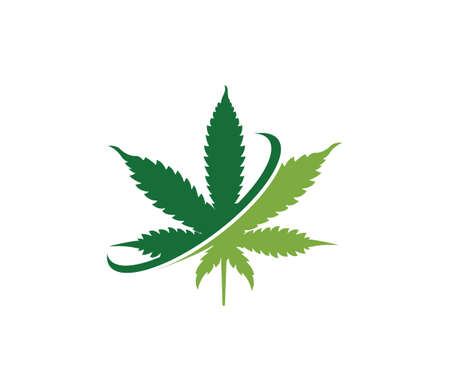 simple green cannabis hemp leaf vector logo template in withe background