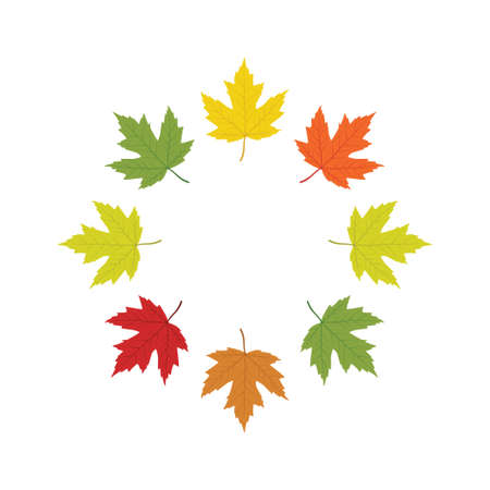maple leaf red to yellow arranged into circle vector illustration design template