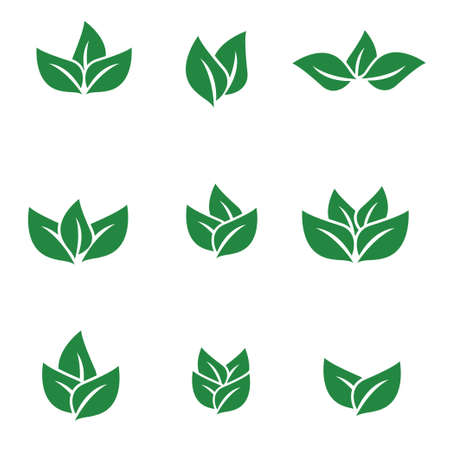 agriculture botany green tea leaf vector logo design template