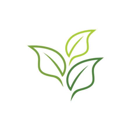 agriculture botany green tea leaf vector logo design template Logó
