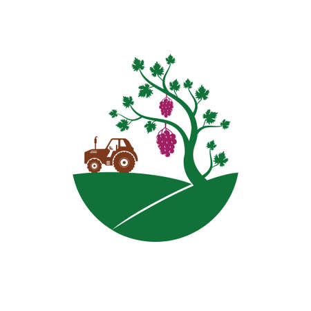 grape vine fruit plant in the hill with tractor vector logo design illustration template Illusztráció