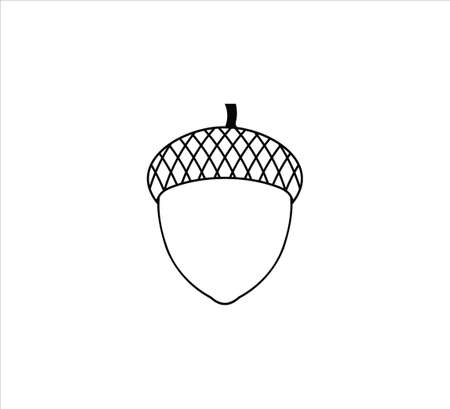 single acorn nut oak fruit vector  design template symbol of fertility