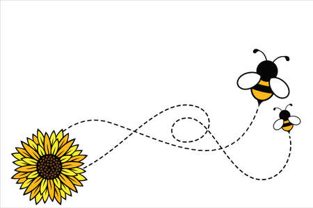 honey bumble bee flying and sun flower vector background poster illustration template