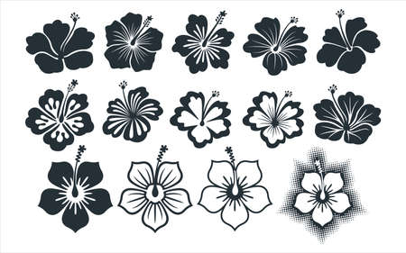 hibiscus flower vector graphic design template set for sticker, decoration, cutting and print file