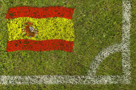 Flag of Spain painted on football pitch