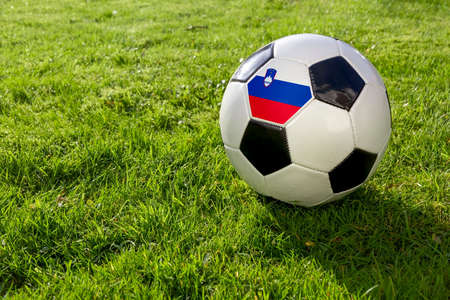Football on a grass pitch with Slovenia Flag