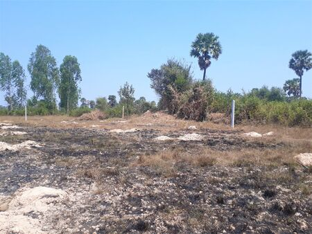 Cambodia rice paddy stubble burnt for next years crop. Dry season burning to clear land.